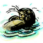 Otter from Ping & Po-Li: Rainforest Rescue by Irish author Audrey Moore